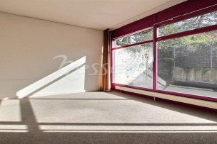 OFFICES FOR RENT IN CRISSIER II